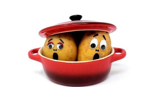 Η Ιστορία της Πατάτας